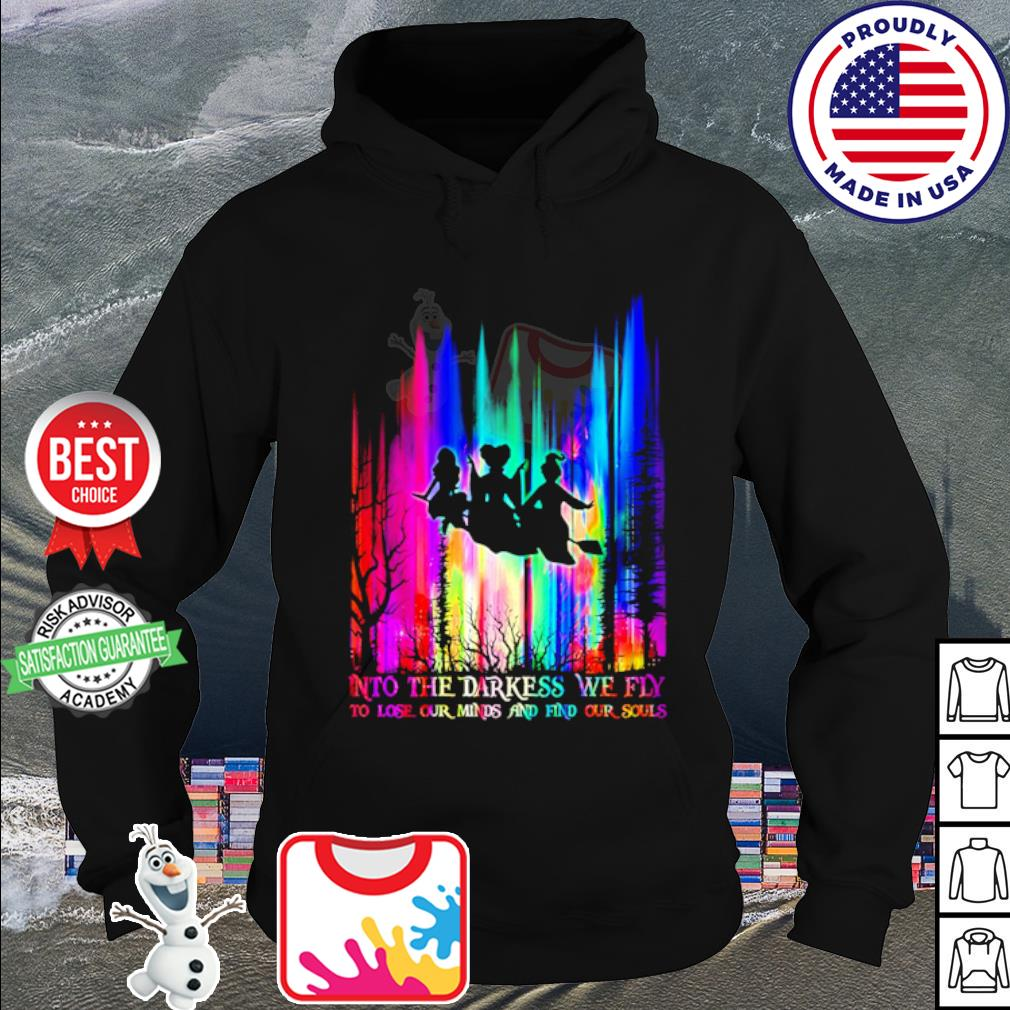 Hocus Pocus Into the darkess we fly to lose our minds and find our souls s hoodie